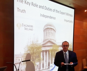 the-key-role-and-duties-of-the-expert-witness